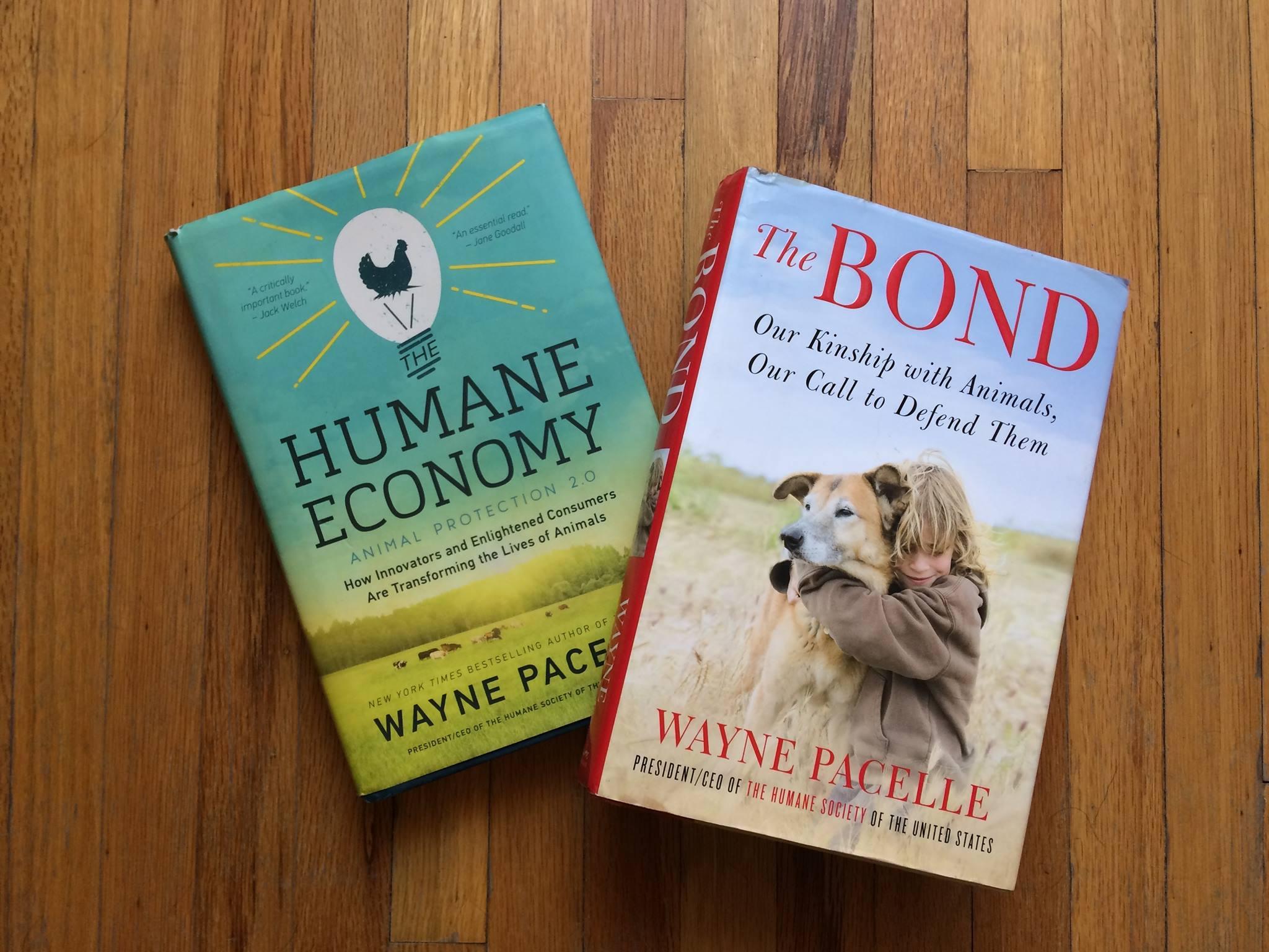libros mascota animales