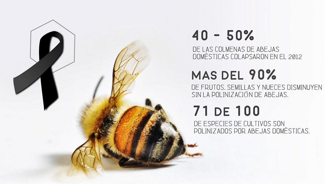 Dónde están las abejas? - NES No Estás Sola